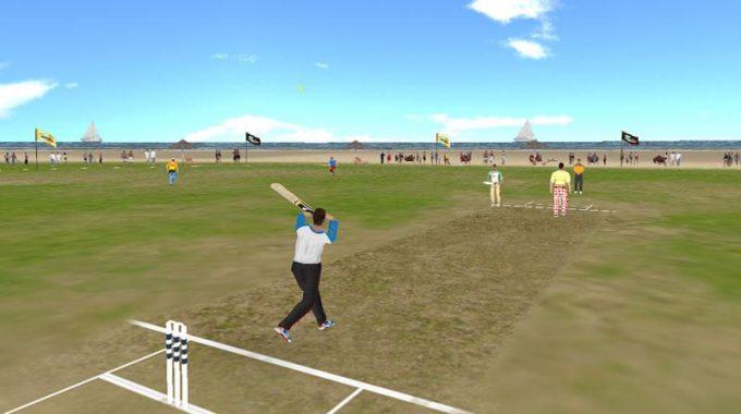 Beach Cricket- screenshot