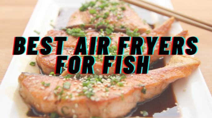 Best Air Fryers For Fish in India